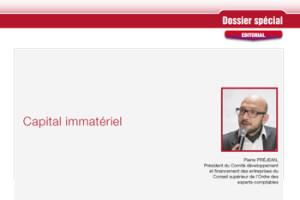 Dossier Spécial «Capital Immatériel»